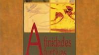 Afinidades Furtivas – Lourdes Talavera